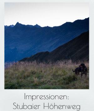Impressionen: Stubaier Höhenweg